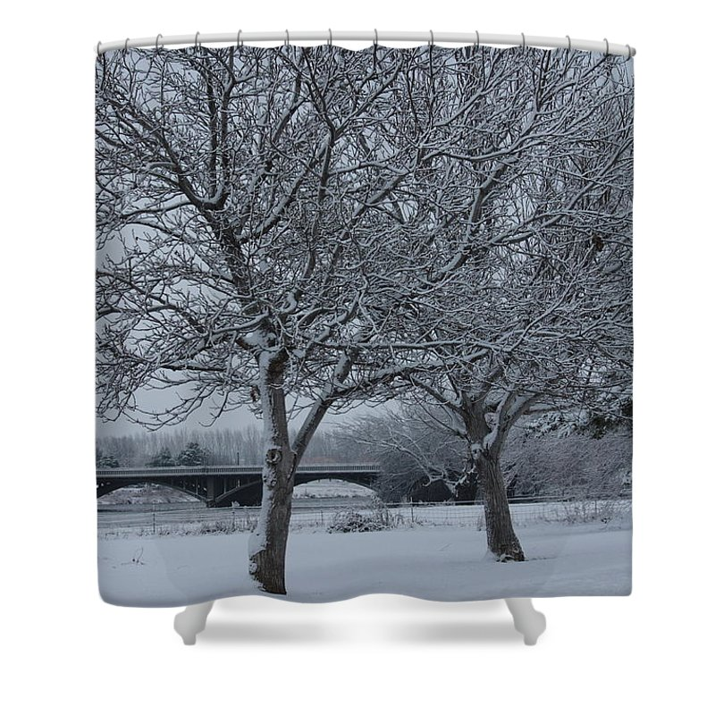 Winter Shower Curtain featuring the photograph Two Winter Trees by Carol Groenen