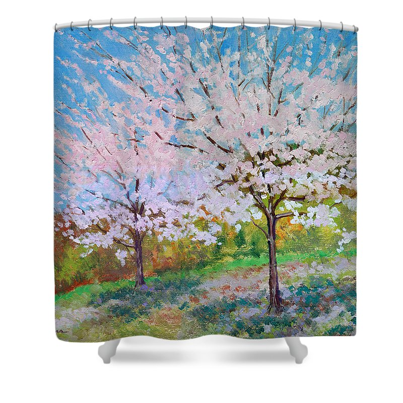 Landscape Shower Curtain featuring the painting Two Yoshinos by Keith Burgess