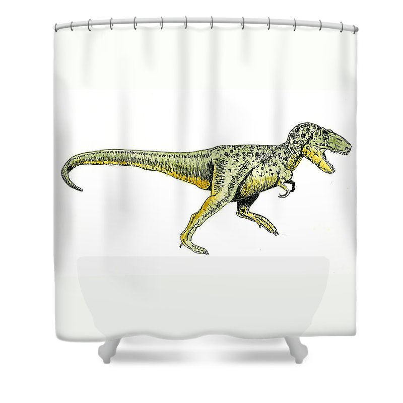 Animals Shower Curtain featuring the painting Tyrannosaurus Rex by Michael Vigliotti