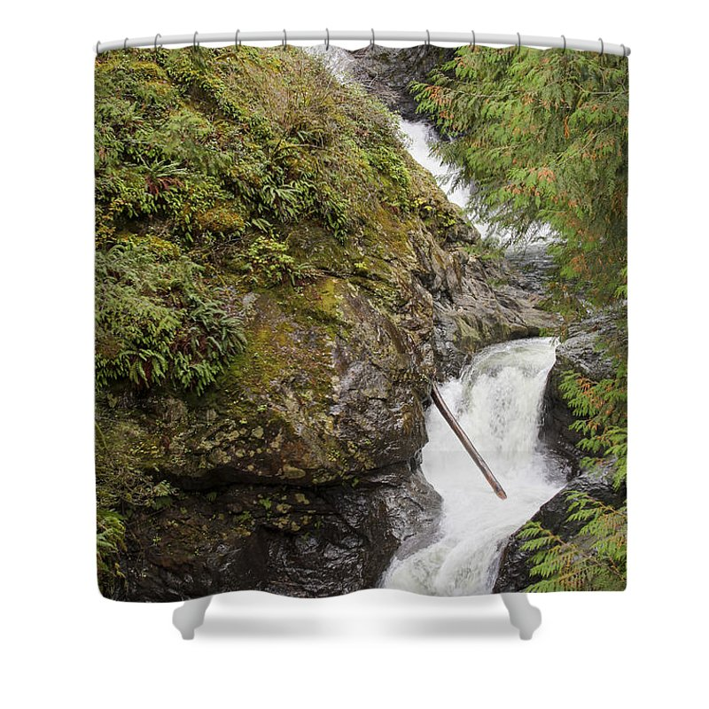 Landscape Shower Curtain featuring the photograph Upper Twin Falls Steps by Darleen Stry