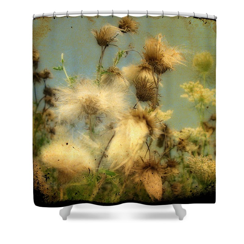 Weeds Shower Curtain featuring the photograph Urban Flowers by Gothicrow Images