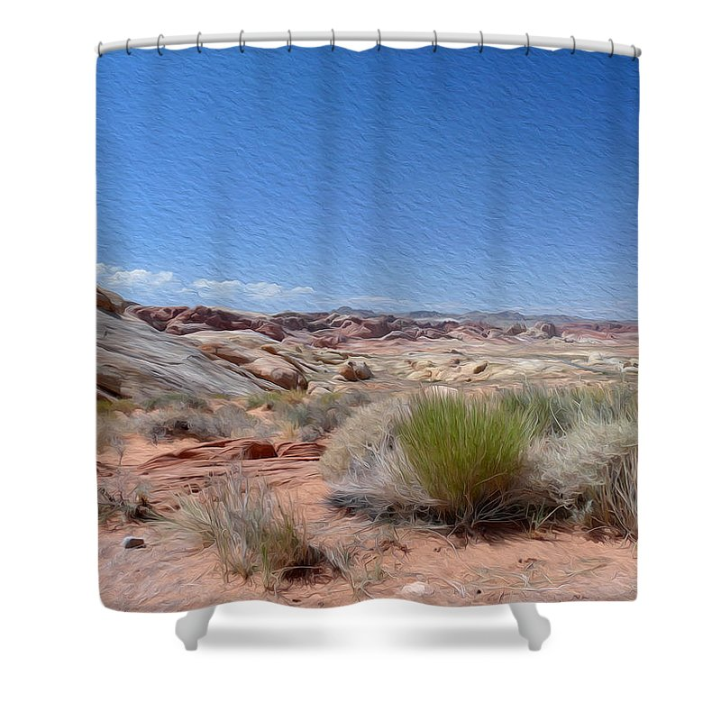 Valley Of Fire State Park Shower Curtain featuring the photograph Valley Of Fire 1 by Tracy Winter