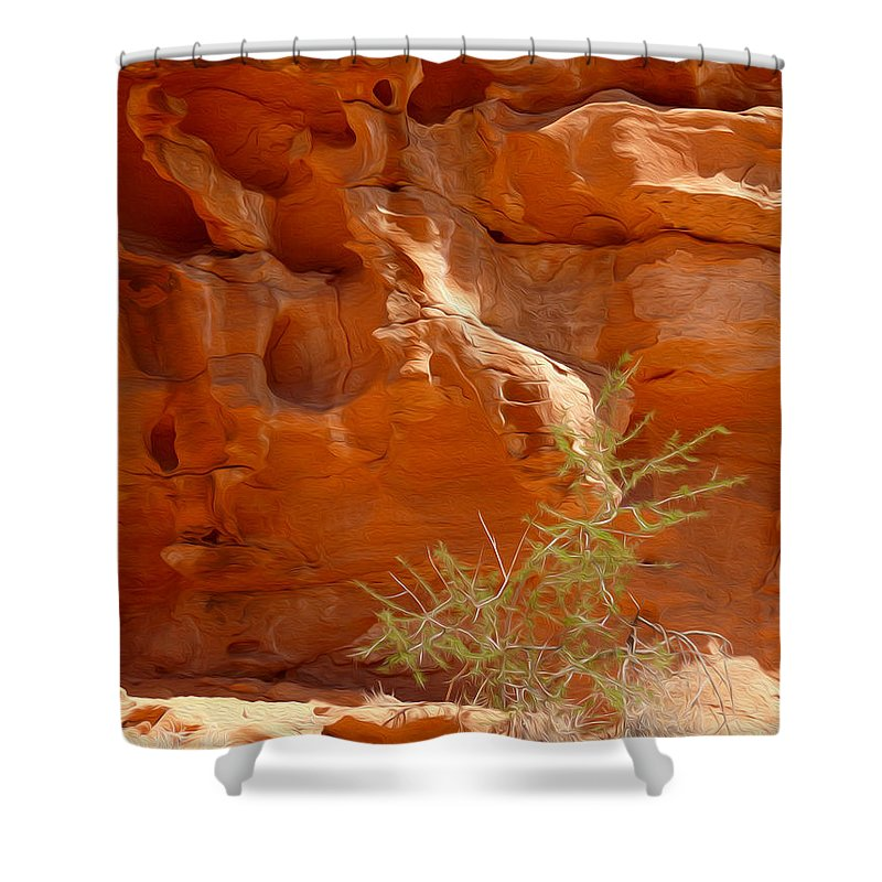 Valley Of Fire State Park Shower Curtain featuring the photograph Valley Of Fire Rock Formation by Tracy Winter