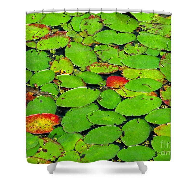 Leaf Shower Curtain featuring the photograph Verdant Swamp by Ann Horn