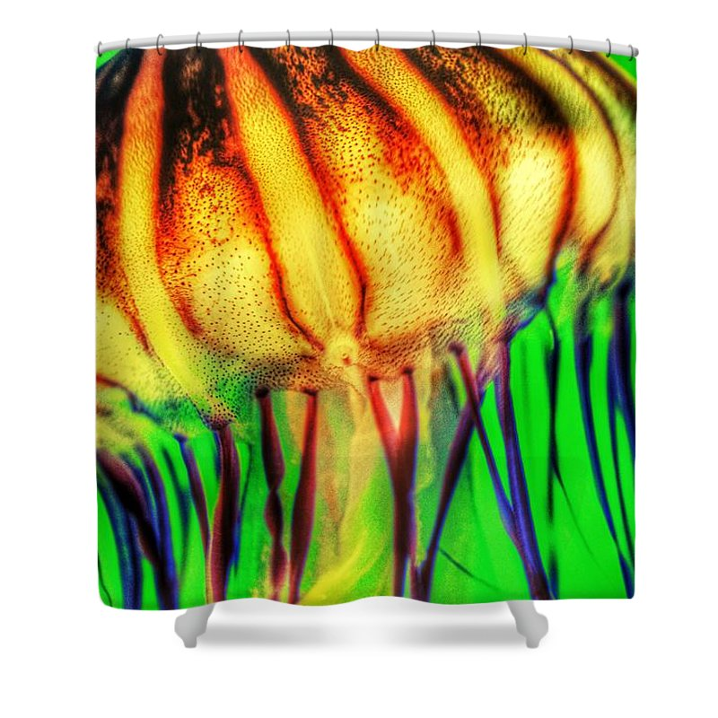 Vibrant Shower Curtain Featuring The Photograph Jellyfish By Marianna Mills