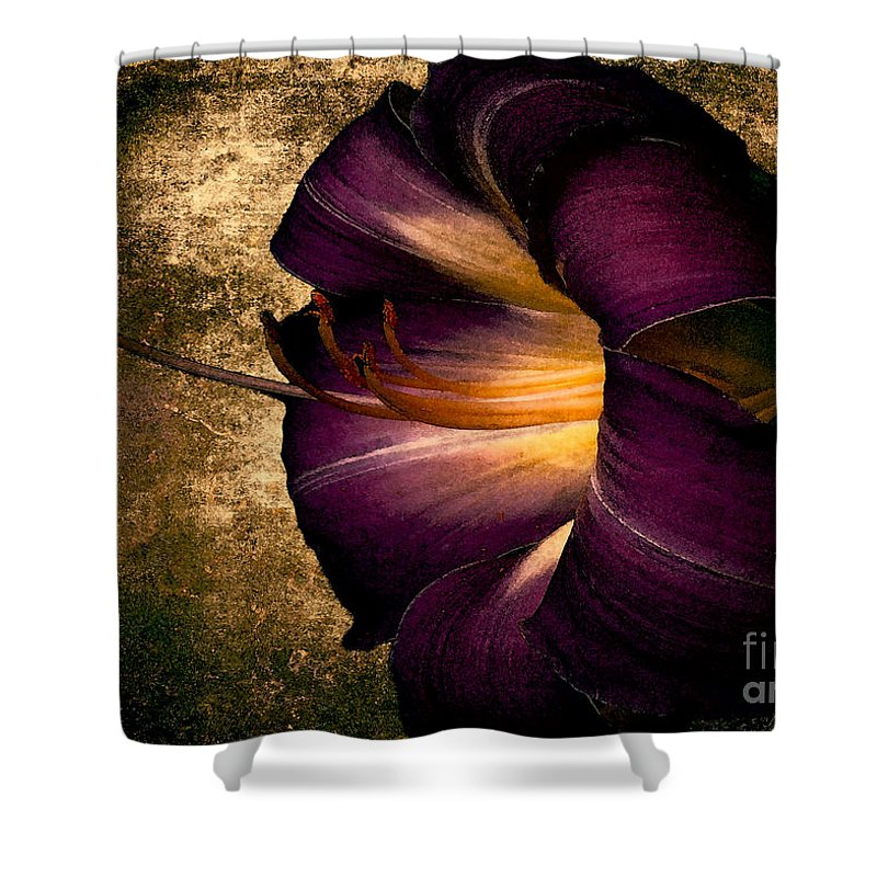 Iris Shower Curtain featuring the photograph Vintage Flower by Mim White