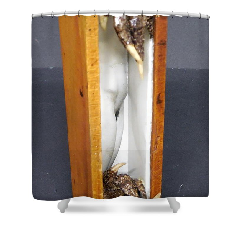 Box Shower Curtain featuring the mixed media Voyeur by M Bellavia
