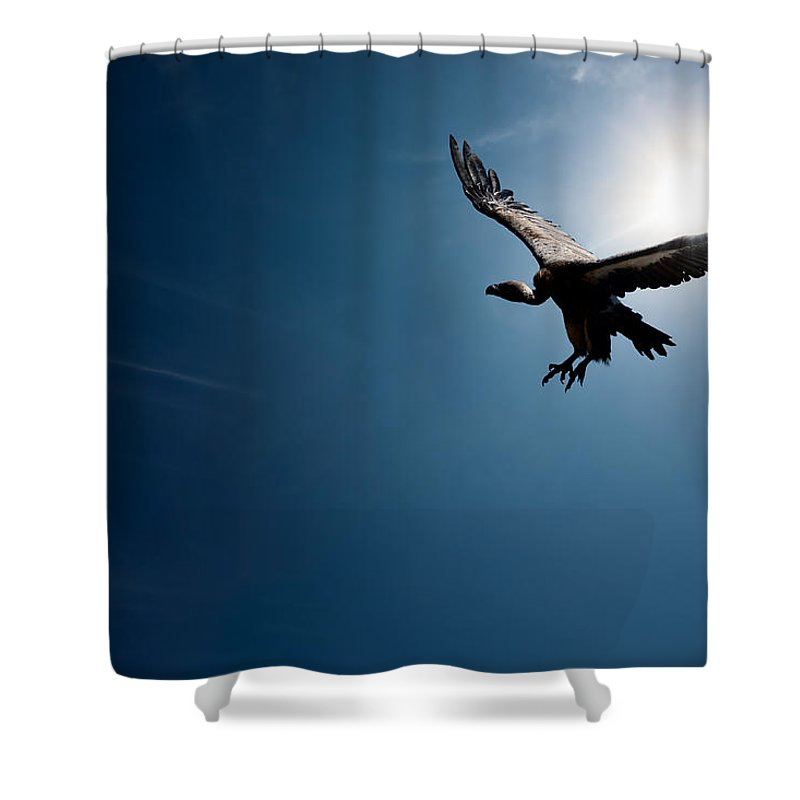 Wonderful Vulture Shower Curtain Featuring The Photograph Vulture Flying In Front Of  The Sun By Johan Swanepoel