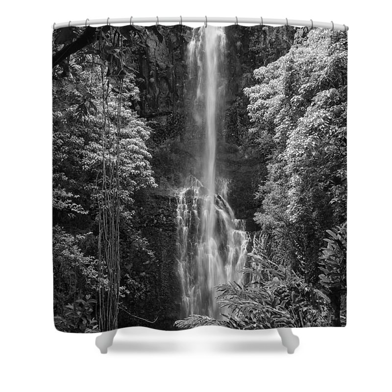 Wailua Falls Road To Hana Maui Hawaii Waterfall Waterfalls Water Landscape Landscapes Tree Trees Vine Vines Fern Ferns Nature Waterscape Waterscapes Black And White Shower Curtain featuring the photograph Wailua Falls 2 by Bob Phillips
