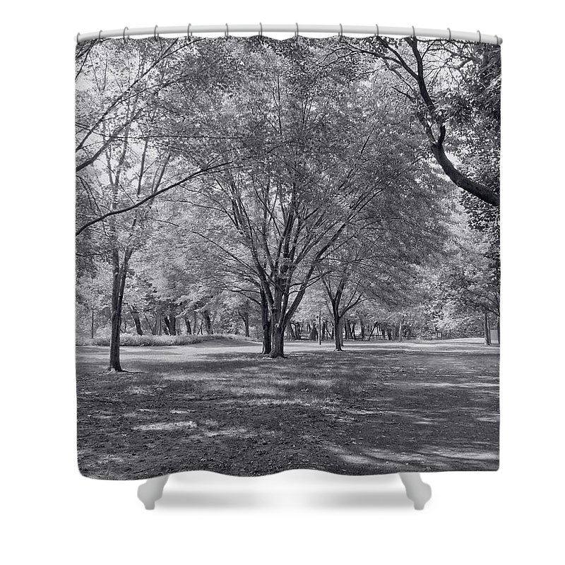 Landscape Shower Curtain featuring the photograph Walk In The Park by Kim Hojnacki