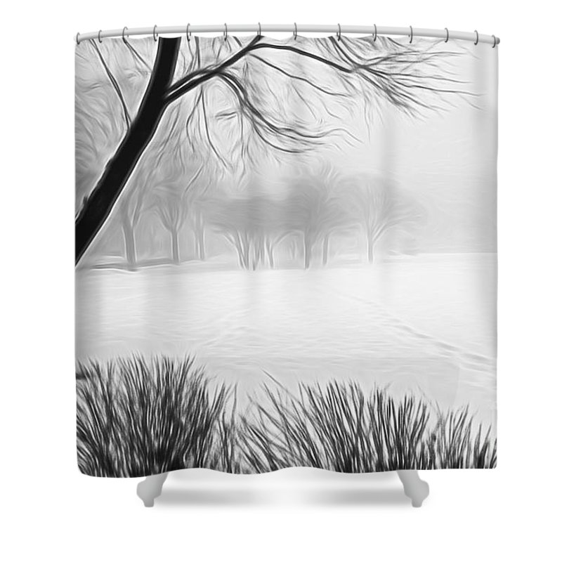 Snow Shower Curtain featuring the photograph Walking Through A Winter Wonderland by Patty Colabuono