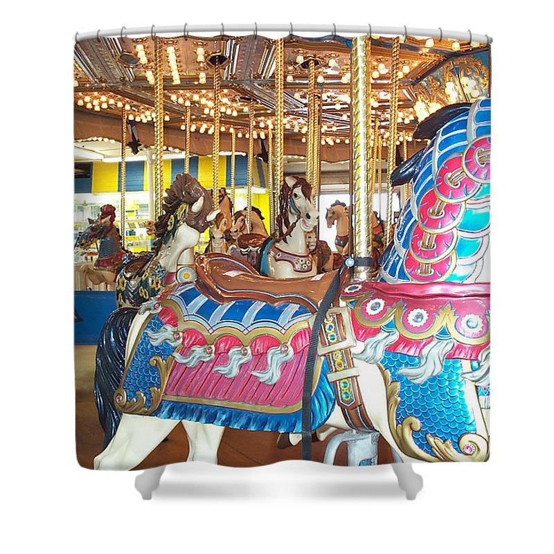 Carousel Horse Shower Curtain featuring the photograph Warrior by Barbara McDevitt