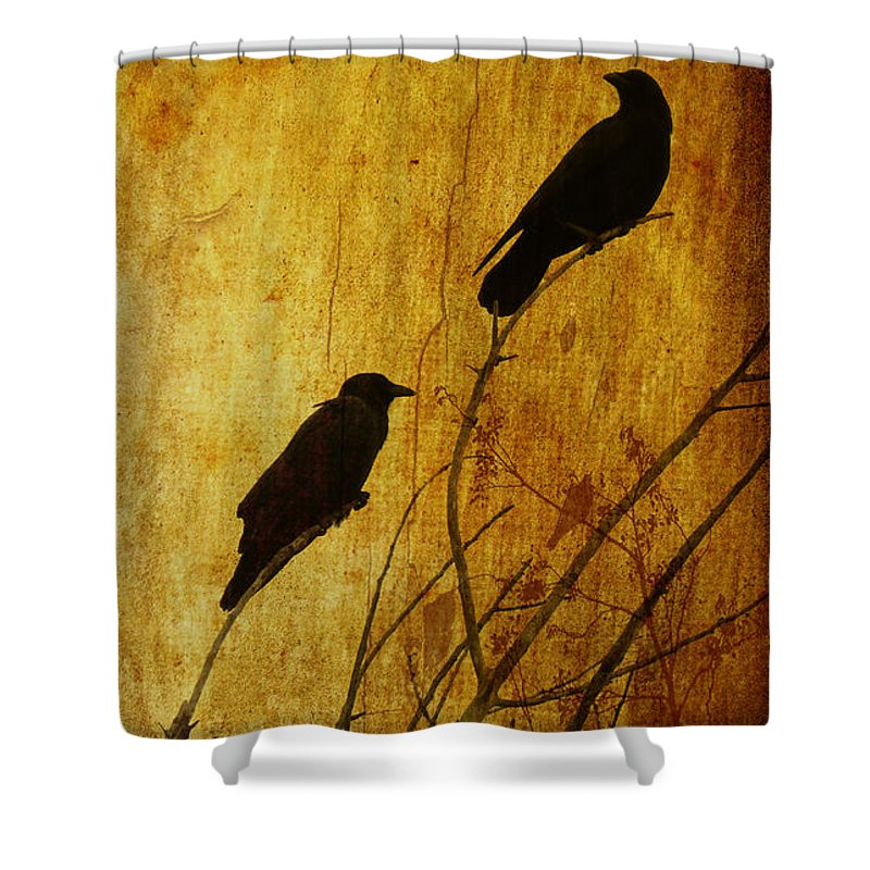 Crows Shower Curtain featuring the photograph Watchers Of The East And West by Putterhug Studio