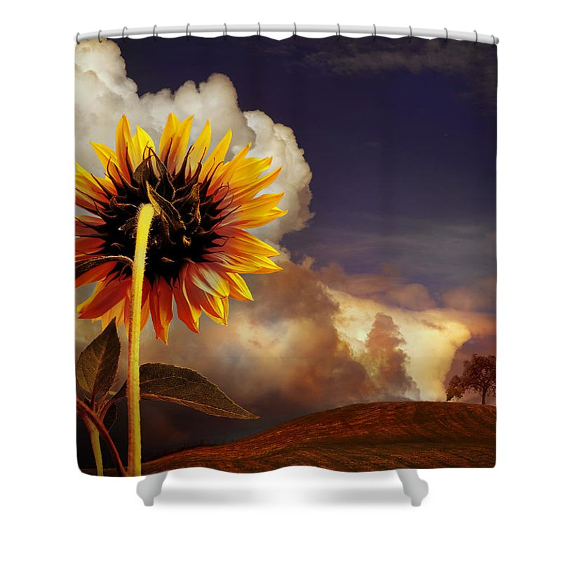Sunset Shower Curtain featuring the photograph Watching The Sun Set by Mal Bray