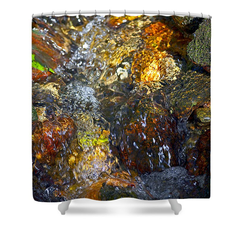 Autumn Leaves Shower Curtain featuring the photograph Water Abstract 2 by Sharon Talson