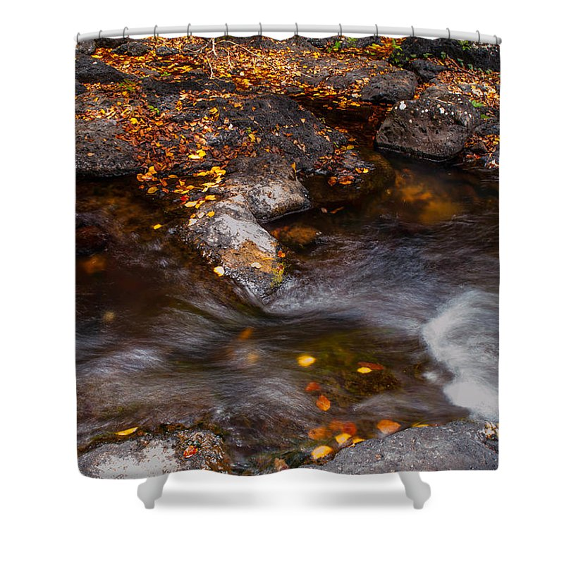 Water Shower Curtain featuring the photograph Water Flow Through The Boulders. Eureka. Mauritius by Jenny Rainbow