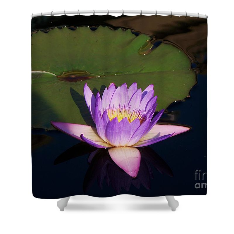 Photograph Shower Curtain featuring the photograph Water Lilies Monet by Eric Schiabor
