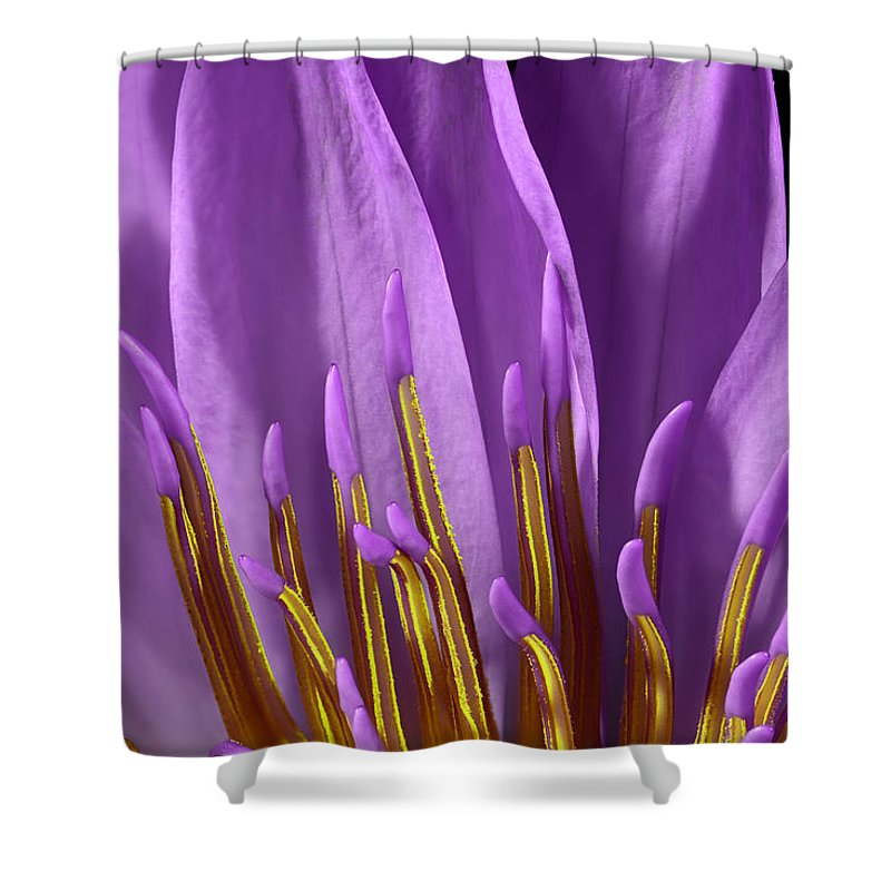 Lily Shower Curtain featuring the photograph Water Lily-0005 by Russ Greene