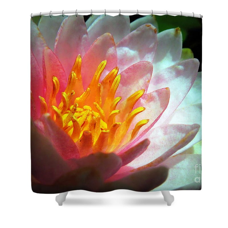 Michigan Shower Curtain featuring the photograph Water Lily In The Sun by Renee Trenholm