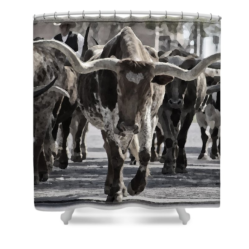 Fort Worth Shower Curtains