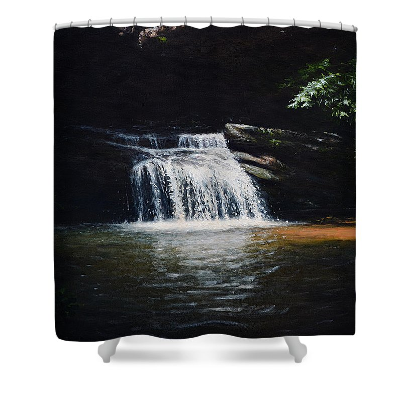 Landscape Shower Curtain featuring the painting Waterfall At Table Rock National Forest by Erik Schutzman