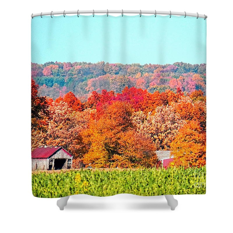 Ohio Shower Curtain featuring the photograph Wayne County Ohio Autumn by Gena Weiser