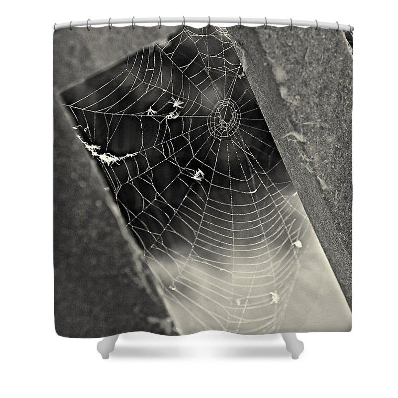 Geometric Web Shower Curtain featuring the photograph Web by Erika Weber