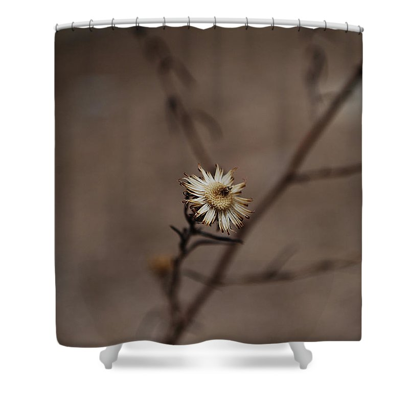 Becky Furgason Shower Curtain featuring the photograph #weed by Becky Furgason