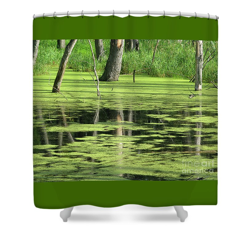Landscape Shower Curtain featuring the photograph Wetland Reflection by Ann Horn