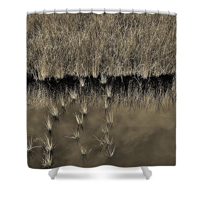 Waterscape Shower Curtain featuring the photograph Wetland Sky by Bob Geary
