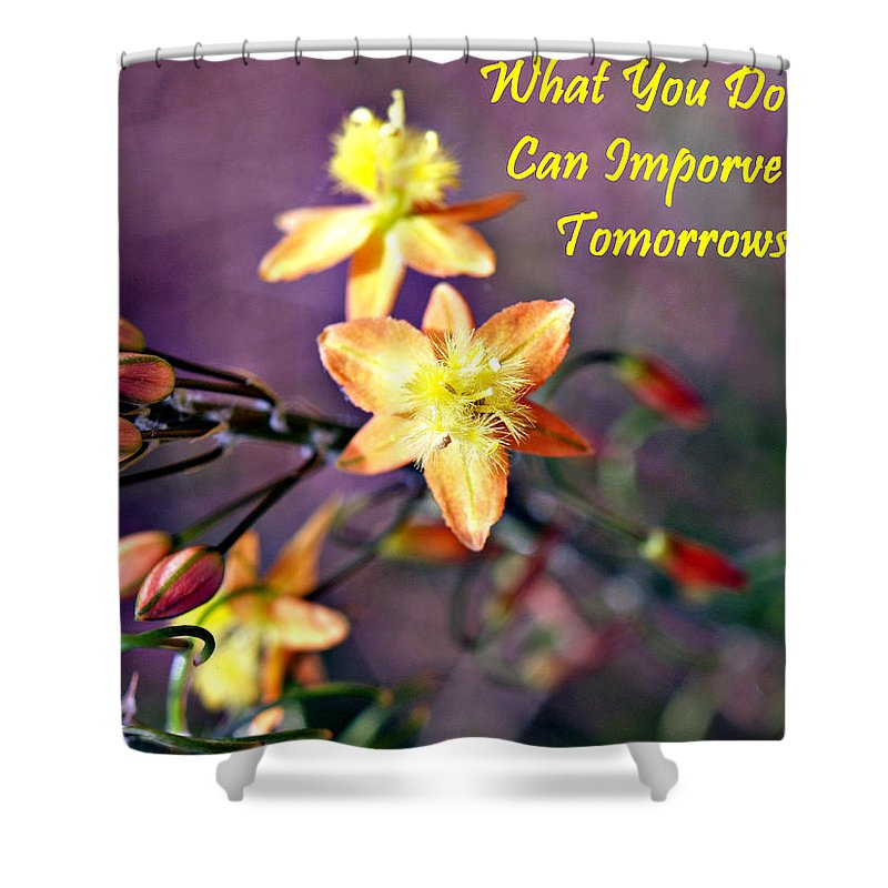 Shower Curtain featuring the photograph What You Do Today... by Bob Johnson