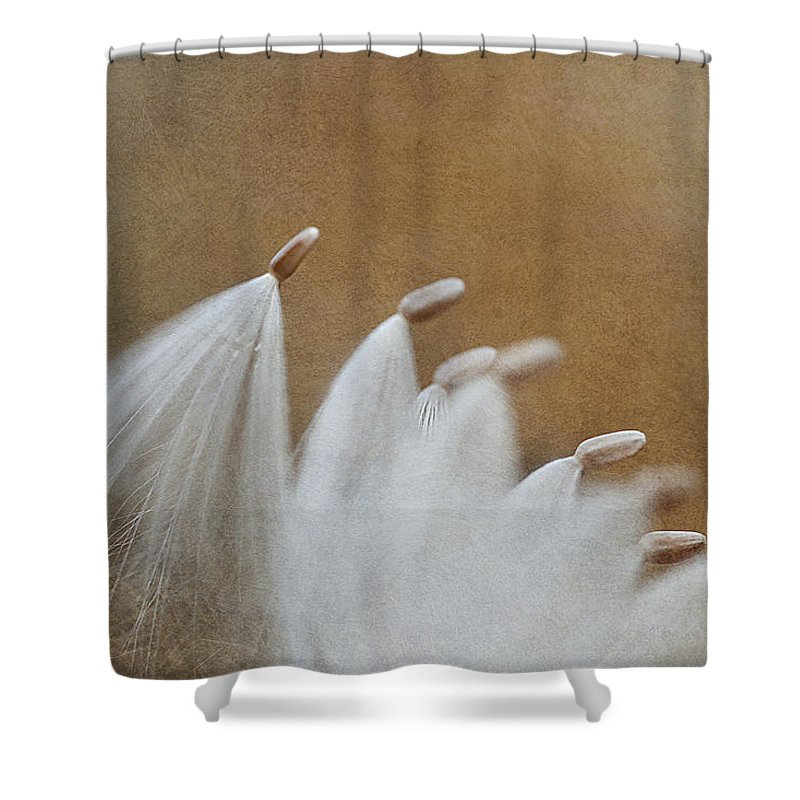 Shower Curtain featuring the photograph Whirling Dervishes by Maria Ismanah Schulze-Vorberg