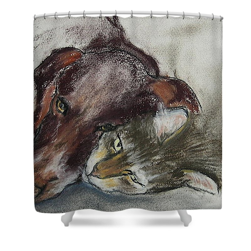 Dog Shower Curtain featuring the drawing Whisker To Whisker by Cori Solomon