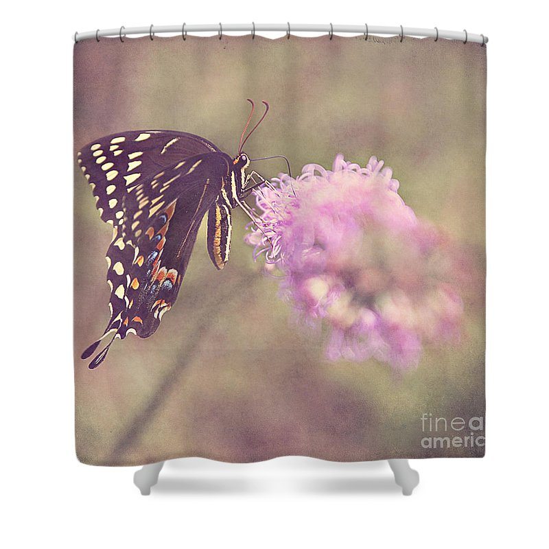 Butterfly Shower Curtain featuring the photograph Whispers Of Nature by Joan McCool