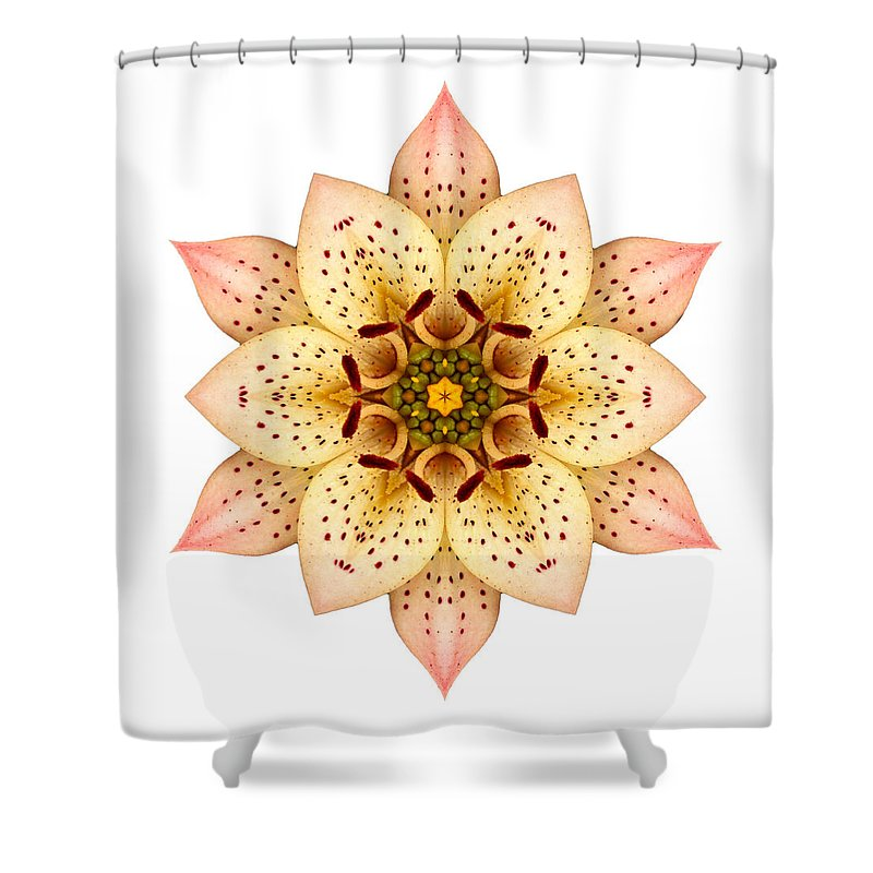 Flower Shower Curtain featuring the photograph Asiatic Lily II Flower Mandala White by David J Bookbinder