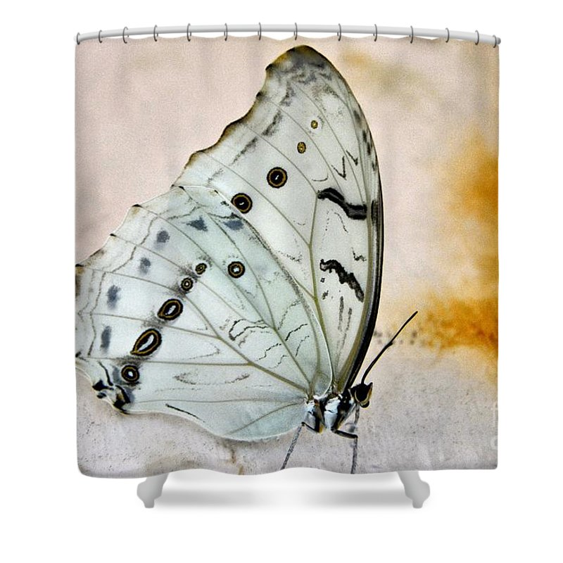 Butterfly Shower Curtain featuring the photograph White Butterfly by Edna Weber