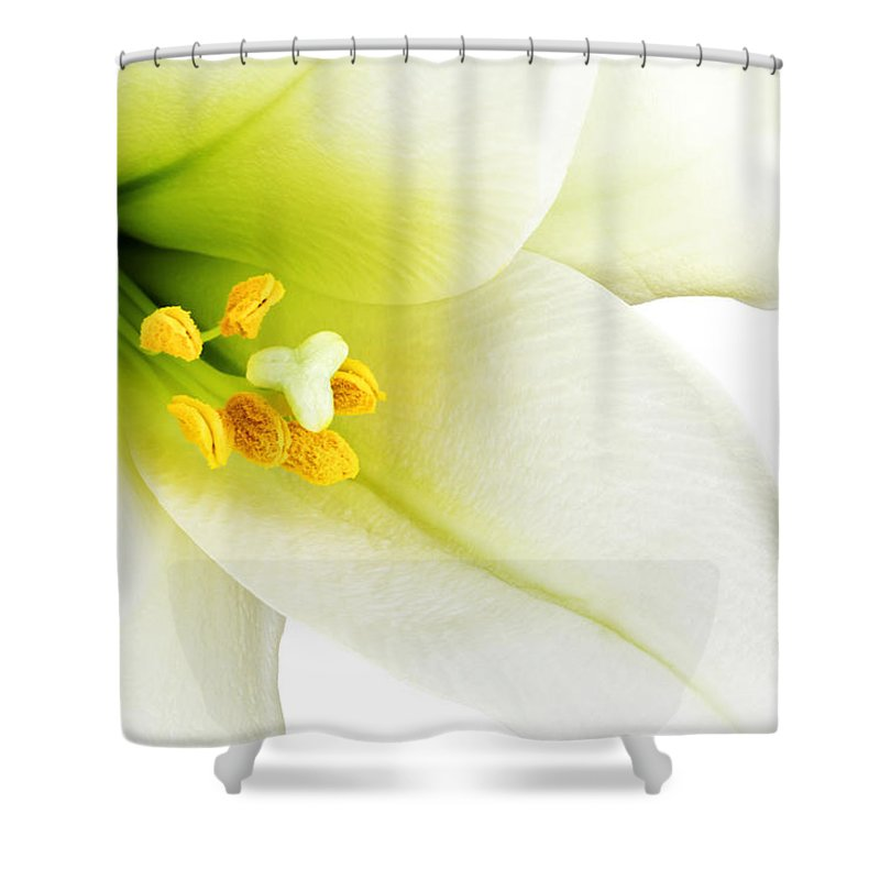 Beautiful Shower Curtain featuring the photograph White Lilly Macro by Johan Swanepoel