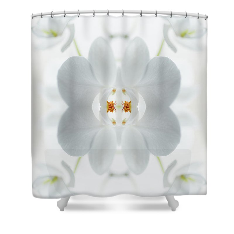 Tranquility Shower Curtain featuring the photograph White Orchid Flower by Silvia Otte