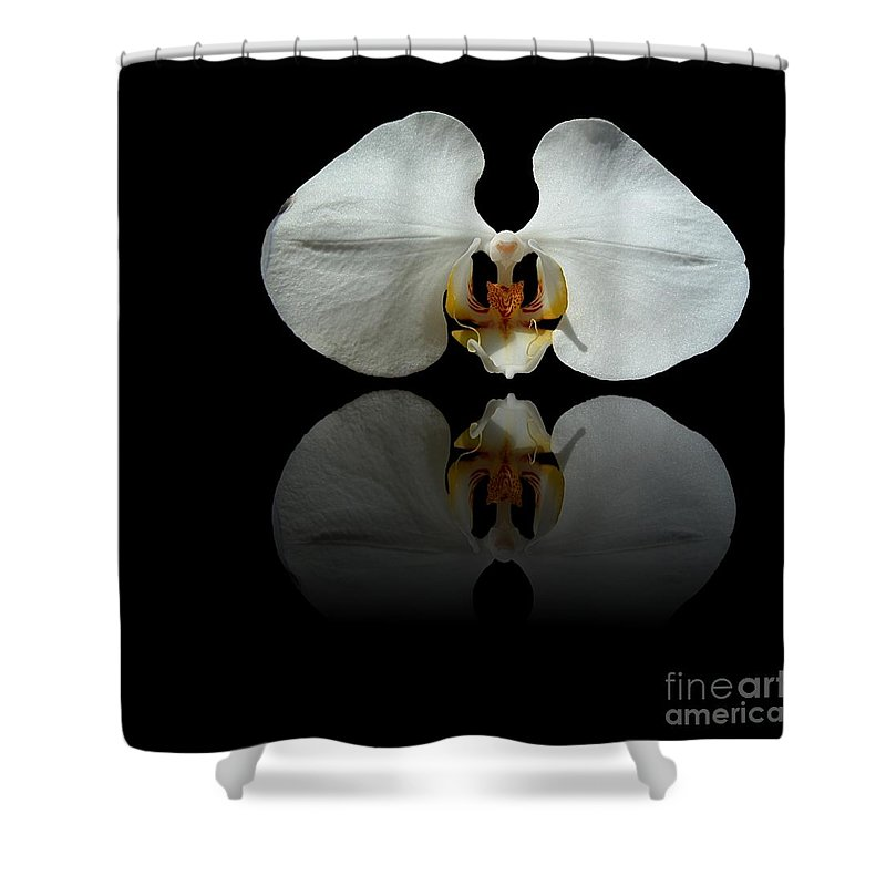 Orchid Shower Curtain featuring the photograph White Reflection by Henrik Lehnerer
