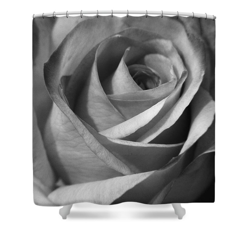 Photography Shower Curtain featuring the photograph White Rose by Jackie Farnsworth