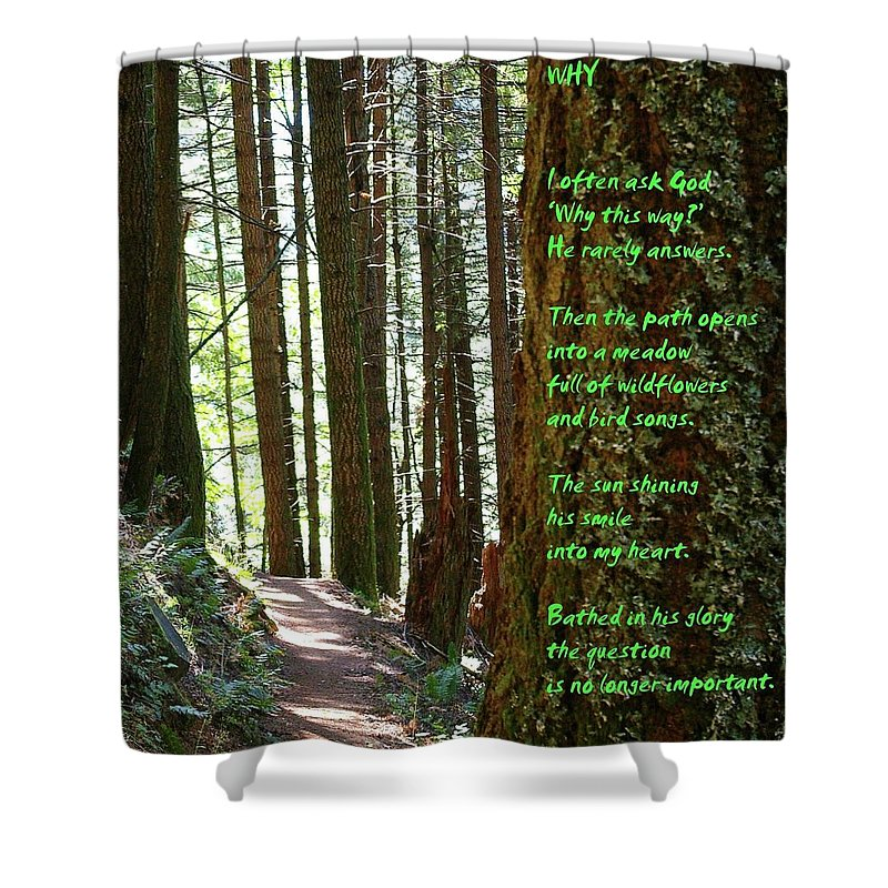 Trees Shower Curtain featuring the photograph Why by Jeff Swan