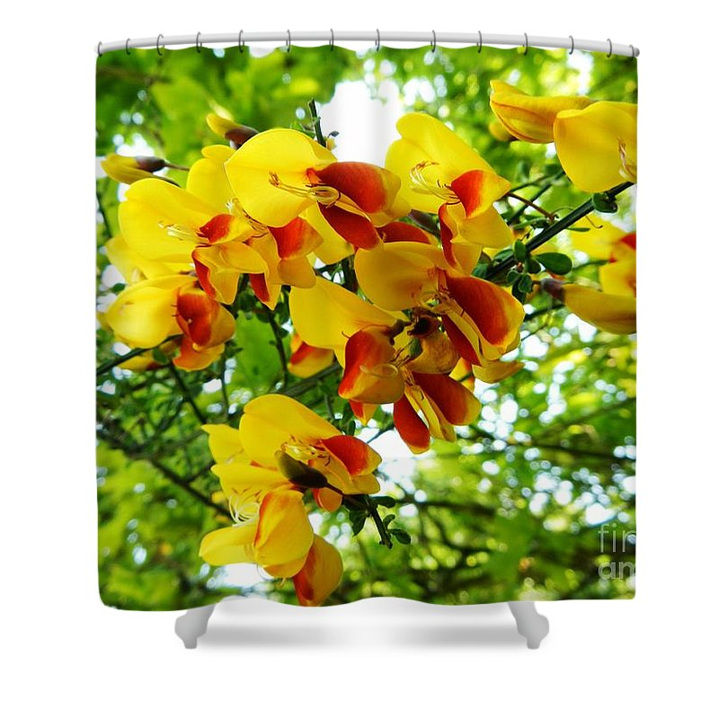 Floral Shower Curtain featuring the photograph Wild And Beautiful by Loreta Mickiene
