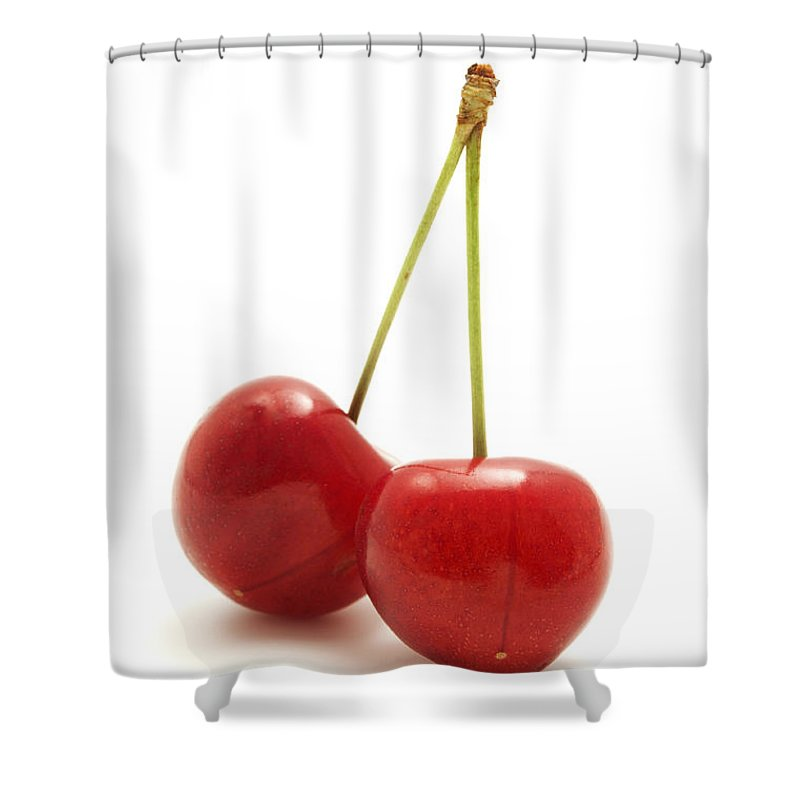 White Background Shower Curtain featuring the photograph Wild Cherry by Fabrizio Troiani