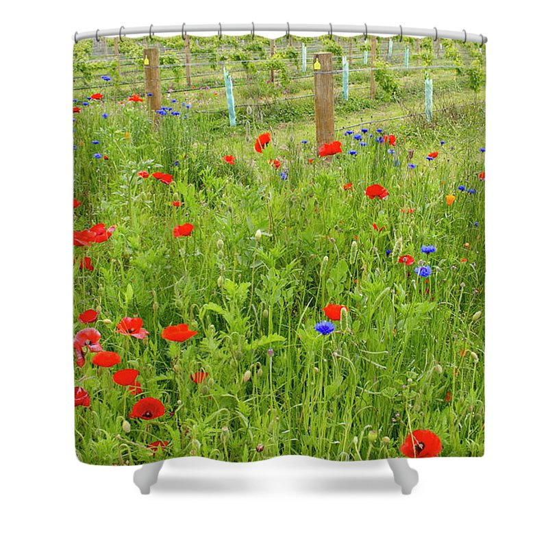 Scenics Shower Curtain featuring the photograph Wild Flowers Along The Edge Of A by Lazingbee