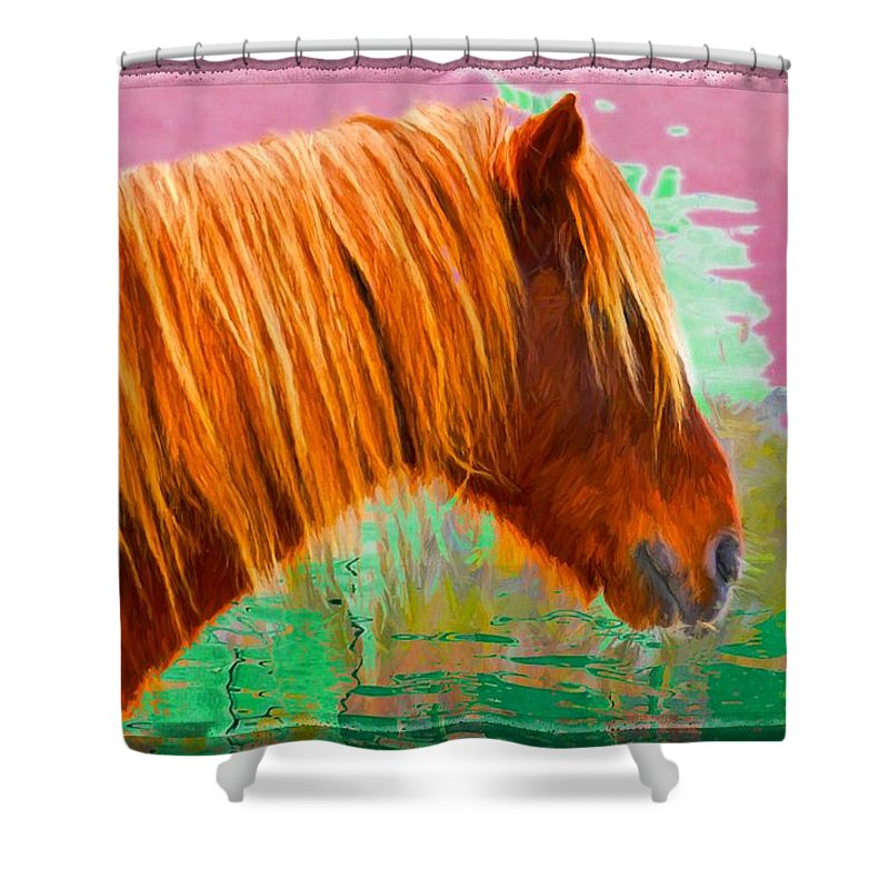 Pony Shower Curtain featuring the photograph Wild Pony Abstract by Alice Gipson