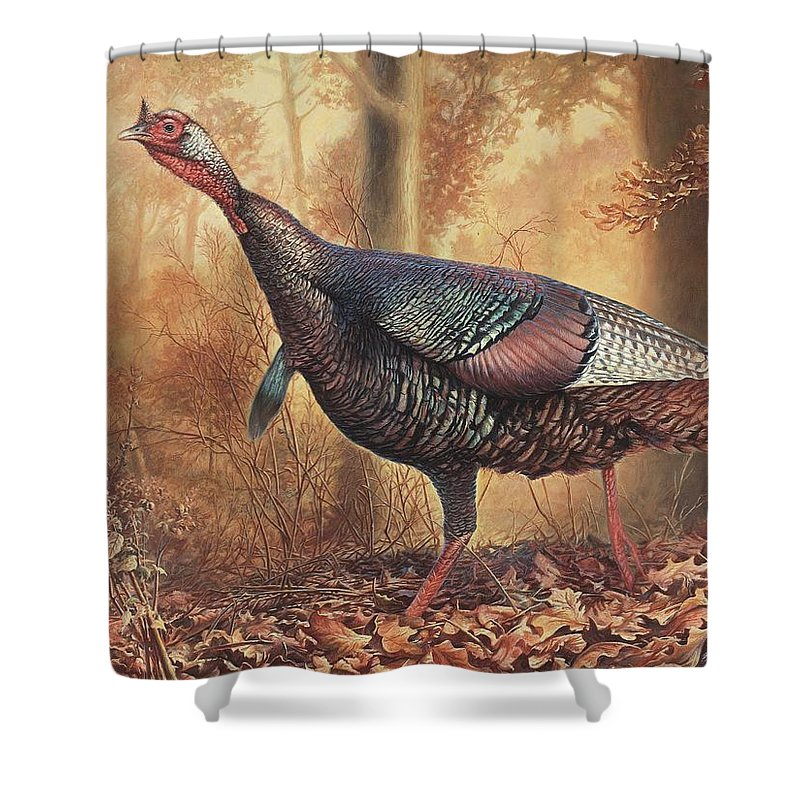Wild Turkey Shower Curtain featuring the painting Wild Turkey by Hans Droog