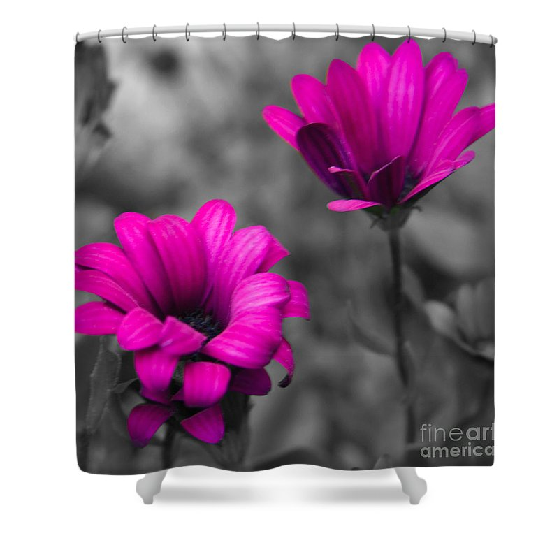 #nature Shower Curtain featuring the photograph Wildflower 2 by Jacquelinemari