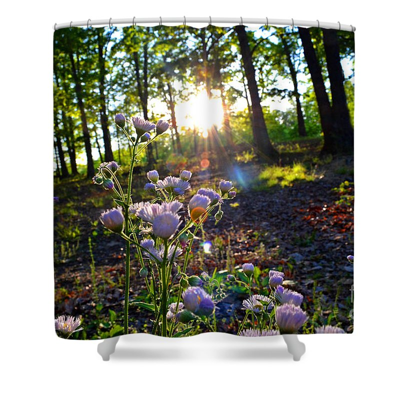 Nature Shower Curtain featuring the photograph Wildflower Sunset by Debbie Portwood