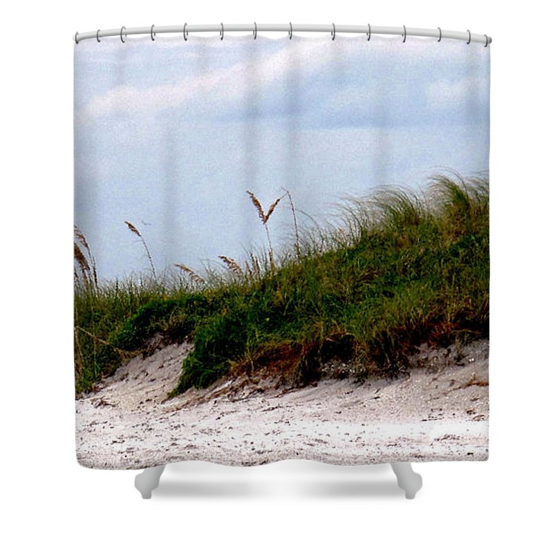 Beach Shower Curtain featuring the photograph Wind In The Seagrass by Ian MacDonald