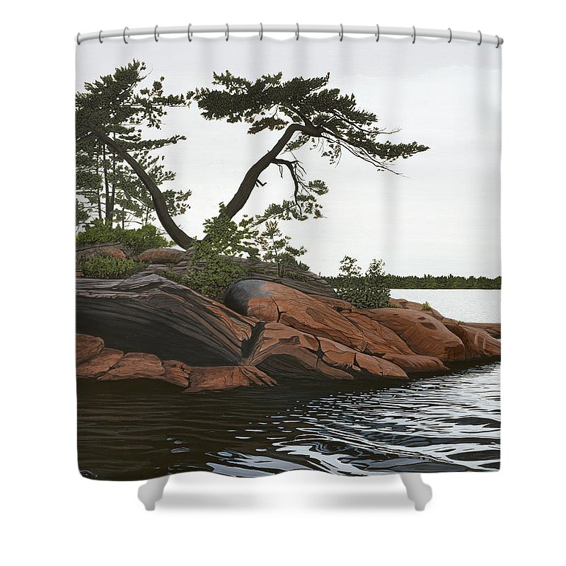 Landscape Paintings Shower Curtain featuring the painting Windswept by Kenneth M Kirsch